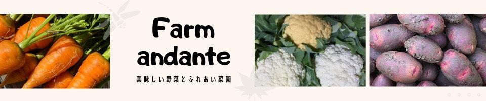 farm andante  珍しい野菜、農薬不使用で野菜を栽培しています。